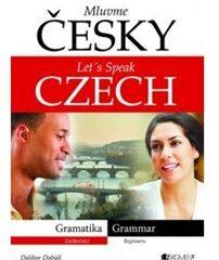 Mluvme česky – gramatika